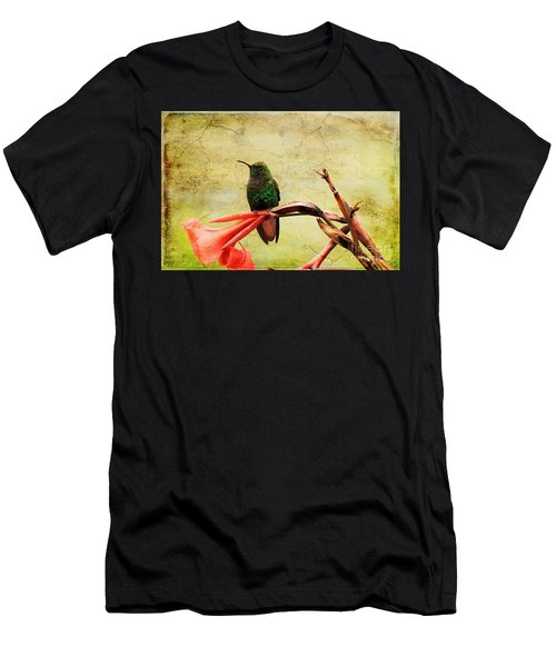 Hummingbird 1 Men's T-Shirt (Athletic Fit)