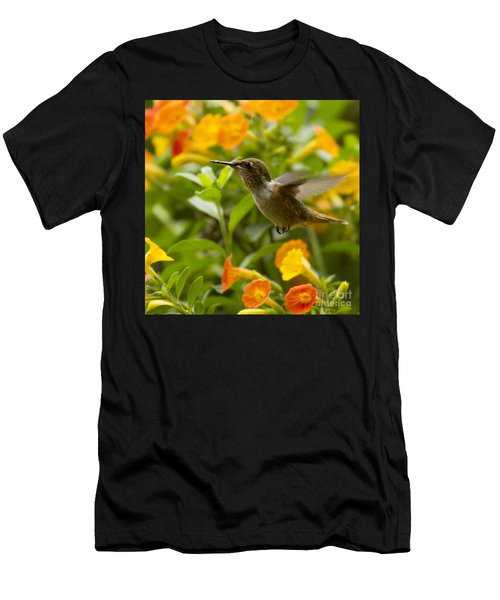 Hummingbird Looking For Food Men's T-Shirt (Athletic Fit)