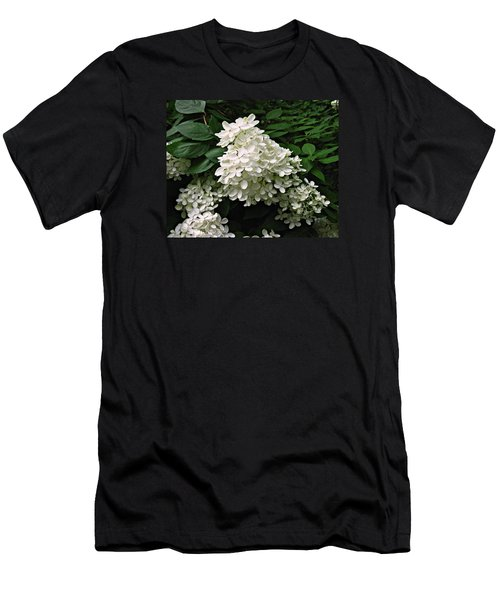Hydrangea Arborescens ' Annabelle ' Men's T-Shirt (Slim Fit) by William Tanneberger