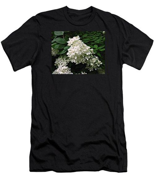 Hydrangea Arborescens ' Annabelle ' Men's T-Shirt (Slim Fit)