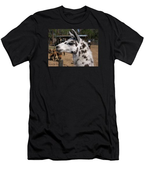 Men's T-Shirt (Slim Fit) featuring the photograph Mad Llama Rules by Belinda Lee