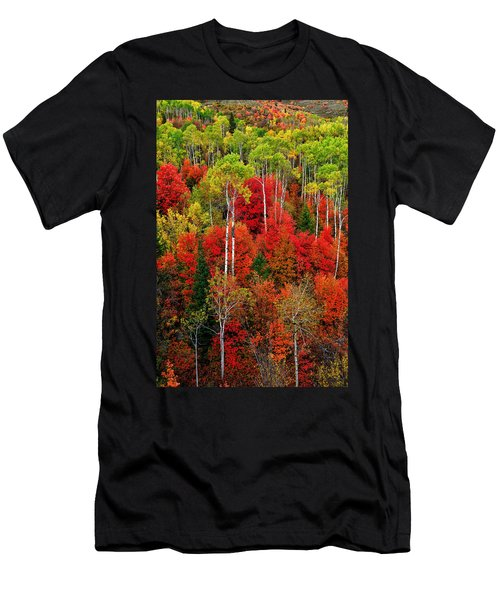 Idaho Autumn Men's T-Shirt (Athletic Fit)