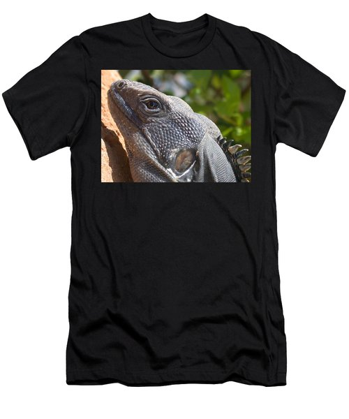Iguana Closeup Men's T-Shirt (Athletic Fit)