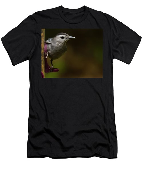 I'm A Cat Bird And I Sound Like One Too Men's T-Shirt (Athletic Fit)