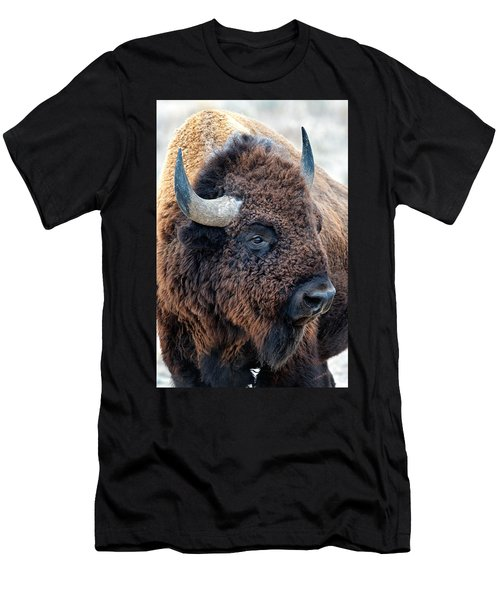 Bison The Mighty Beast Bison Das Machtige Tier North American Wildlife By Olena Art Men's T-Shirt (Athletic Fit)