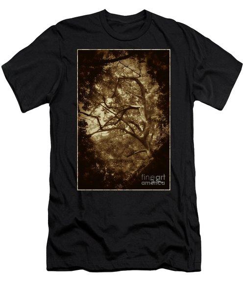 Into The Dark Wood Men's T-Shirt (Slim Fit) by Dan Stone