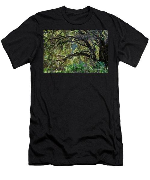 Into The Woods Men's T-Shirt (Slim Fit) by Susan Wiedmann