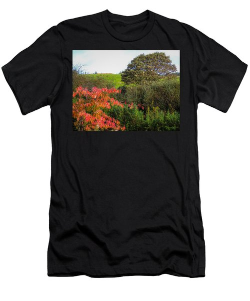 Irish Autumn Countryside Men's T-Shirt (Athletic Fit)