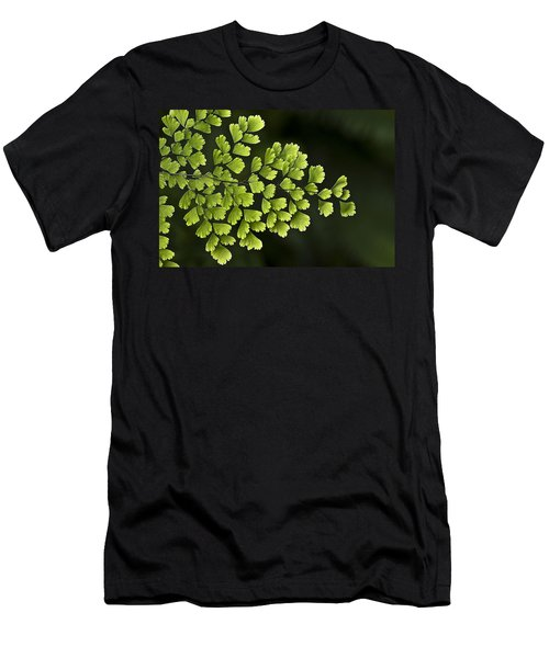 Islands Of Green Men's T-Shirt (Athletic Fit)