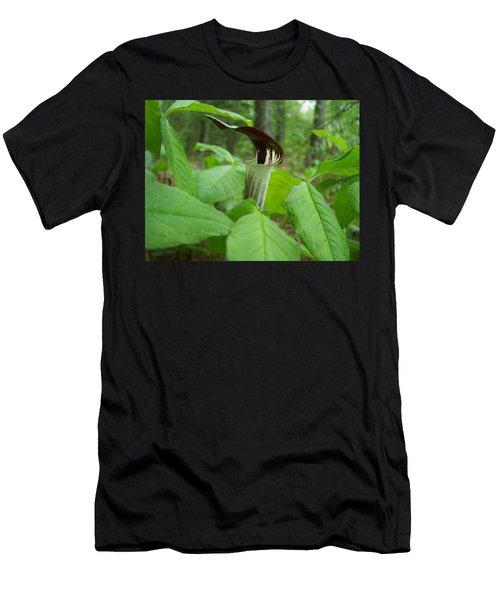 Jack In The Pulpit Men's T-Shirt (Athletic Fit)