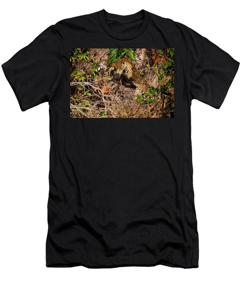 Jaguar Vs Caiman 2 Men's T-Shirt (Athletic Fit)