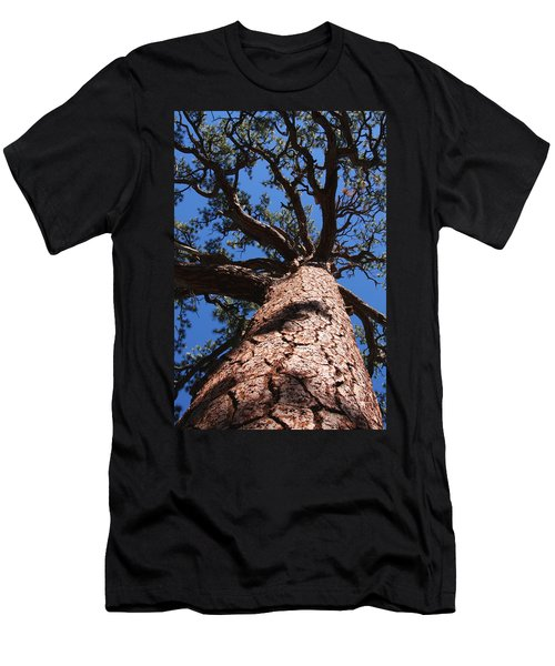 Jeffrey Pine Men's T-Shirt (Athletic Fit)