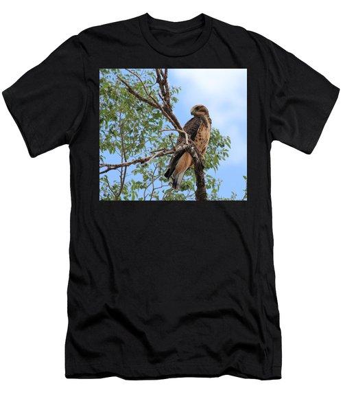 Juvenile Hawk Men's T-Shirt (Athletic Fit)