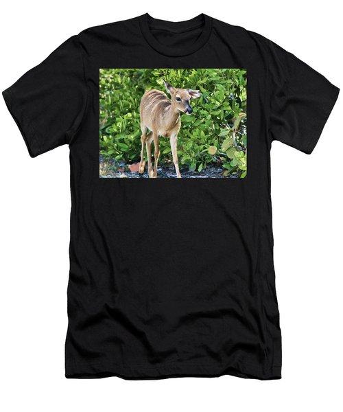 Key Deer Cuteness Men's T-Shirt (Athletic Fit)