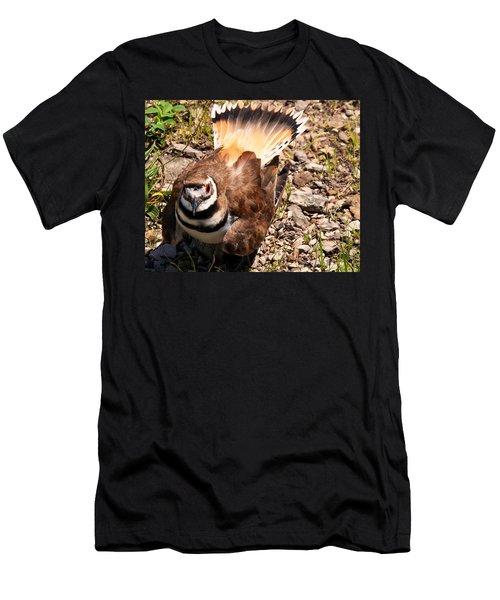 Killdeer On Its Nest Men's T-Shirt (Athletic Fit)