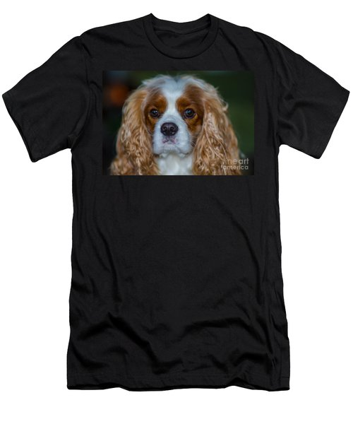 King Charles Men's T-Shirt (Athletic Fit)
