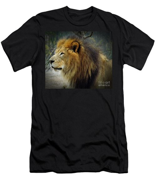 King Of The Jungle Men's T-Shirt (Slim Fit) by Sara  Raber