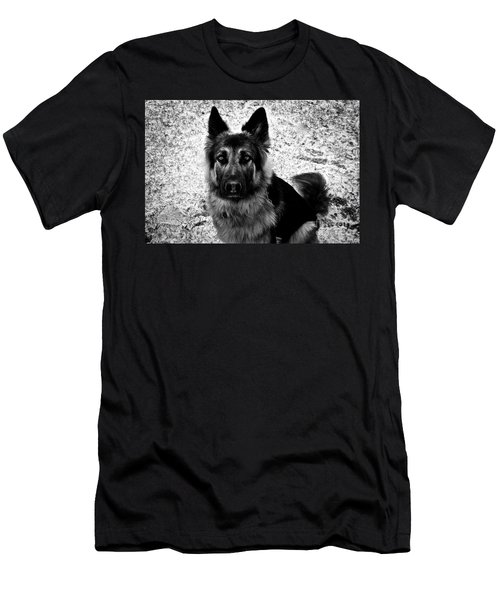 King Shepherd Dog - Monochrome  Men's T-Shirt (Athletic Fit)