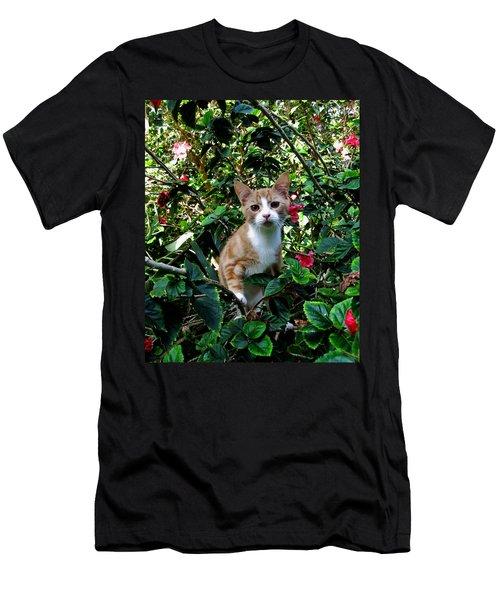 Kitten Men's T-Shirt (Slim Fit) by Pamela Walton