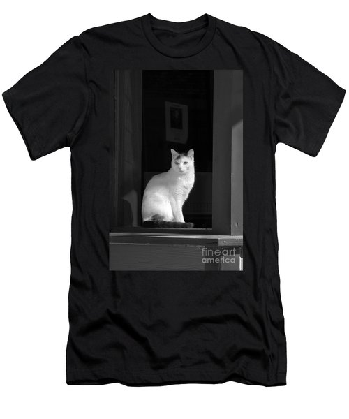 Kitty In The Window Men's T-Shirt (Athletic Fit)
