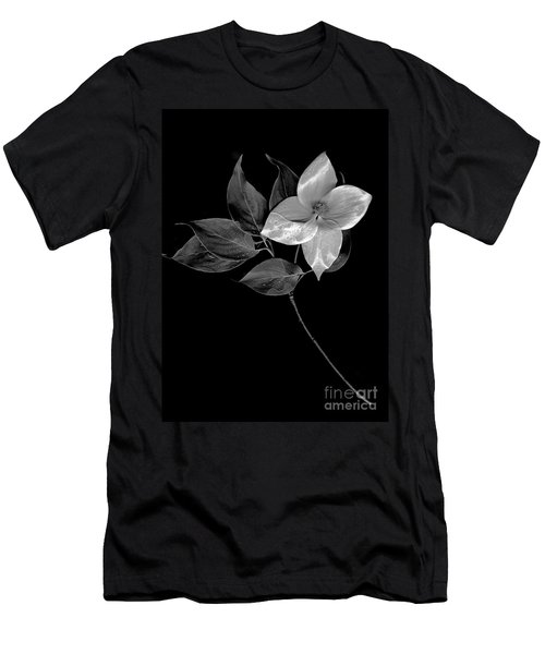 Kousa Dogwood In Black And White Men's T-Shirt (Athletic Fit)