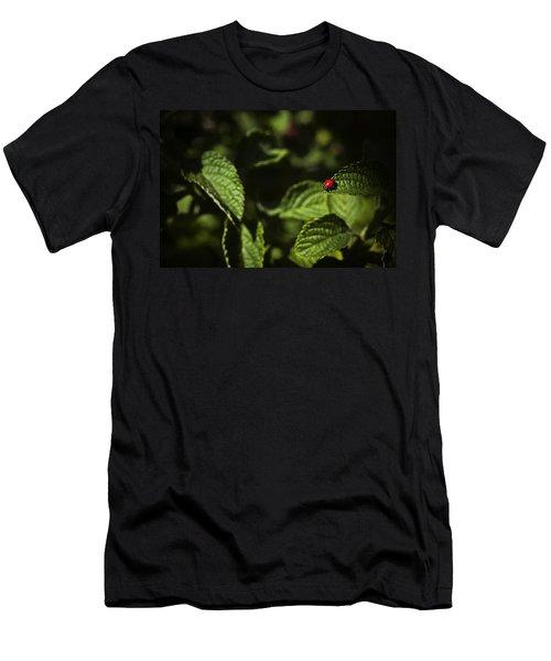 Ladybug Men's T-Shirt (Slim Fit) by Bradley R Youngberg