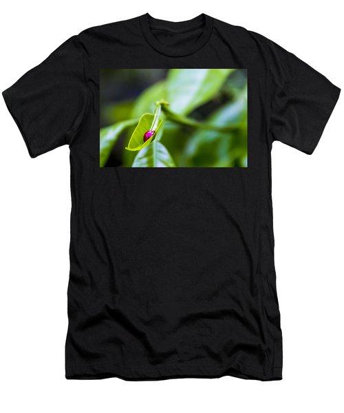 Ladybug Cup Men's T-Shirt (Athletic Fit)
