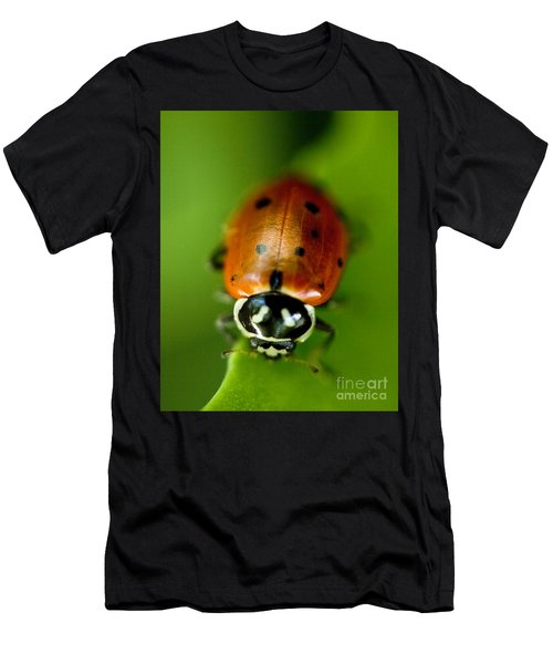 Ladybug On Leaf Men's T-Shirt (Athletic Fit)