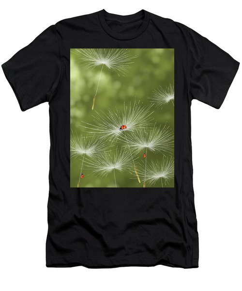 Ladybug Men's T-Shirt (Athletic Fit)