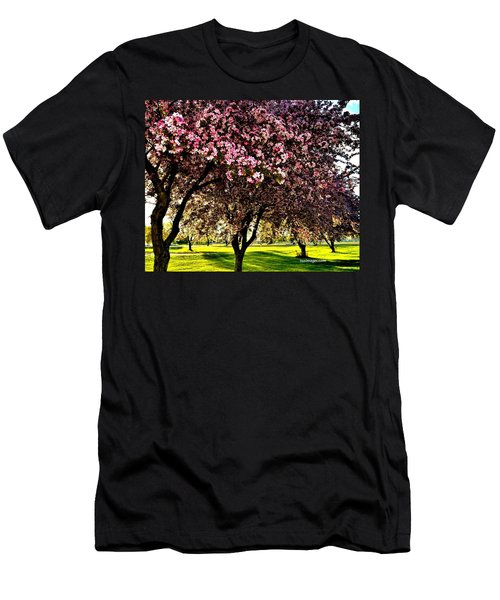 Late Afternoon At Lake Park Men's T-Shirt (Athletic Fit)