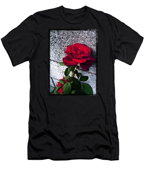 Men's T-Shirt (Slim Fit) featuring the photograph Late Summer Rose by Shawna Rowe