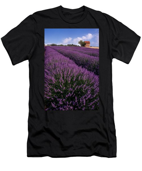 Lavender In Provence Men's T-Shirt (Athletic Fit)