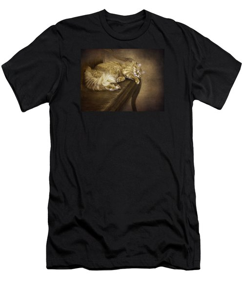 Lazy Cat On A Bench Men's T-Shirt (Athletic Fit)