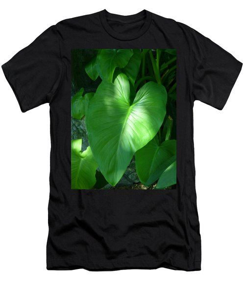 Leaf Heart Men's T-Shirt (Athletic Fit)