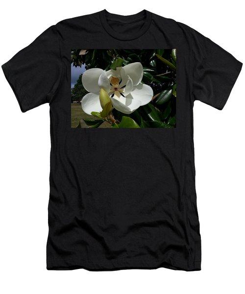 Lemon Magnolia Men's T-Shirt (Slim Fit)