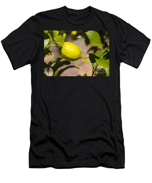 Lemon Tree Very Pretty Men's T-Shirt (Athletic Fit)