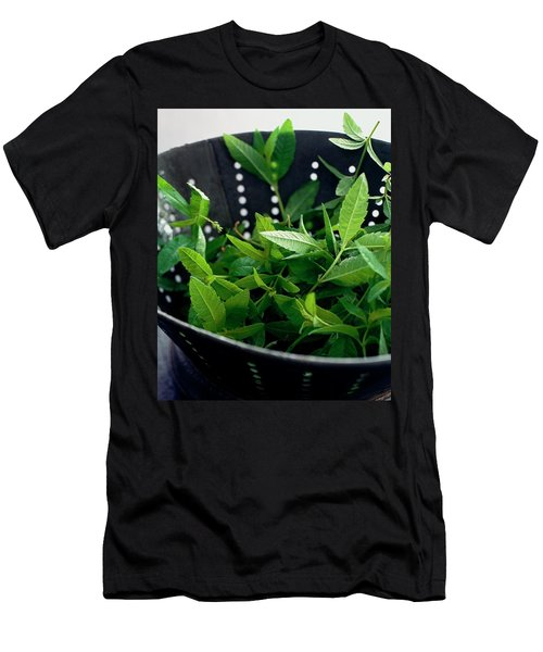 Lemon Verbena Herbs Men's T-Shirt (Athletic Fit)