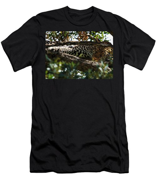 Men's T-Shirt (Athletic Fit) featuring the photograph Leopard In A Tree by Aidan Moran