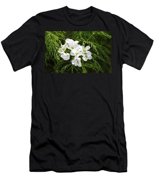 Light Of The White Men's T-Shirt (Athletic Fit)