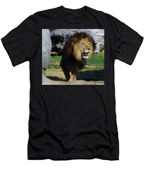 Lion 2 Men's T-Shirt (Athletic Fit)