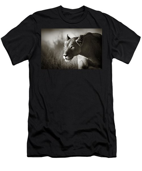 Lioness Stalking Men's T-Shirt (Slim Fit) by Johan Swanepoel