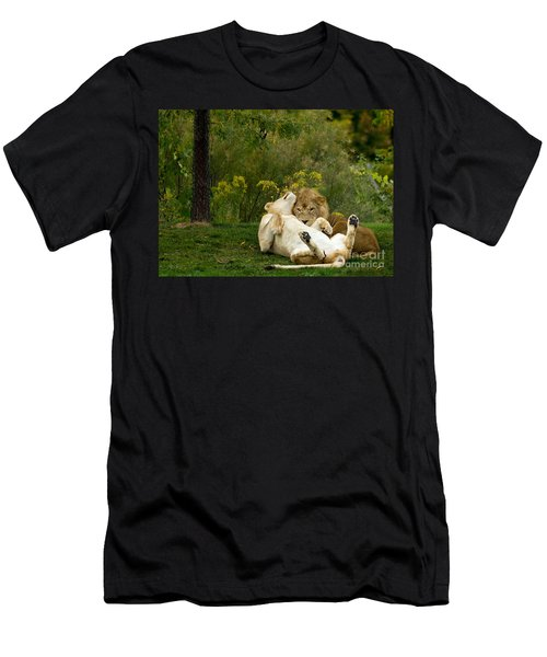 Lions In Love Men's T-Shirt (Athletic Fit)