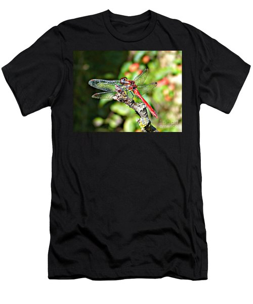 Little Dragonfly Men's T-Shirt (Athletic Fit)