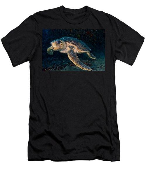 Loggerhead Turtle Under Ledge Men's T-Shirt (Athletic Fit)