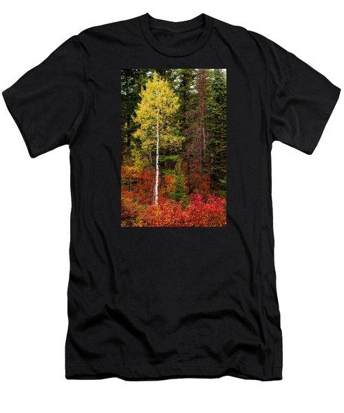 Lone Aspen In Fall Men's T-Shirt (Slim Fit) by Chad Dutson