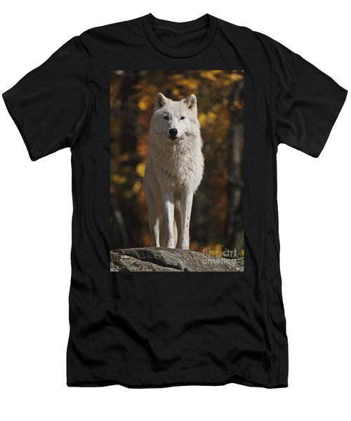 Men's T-Shirt (Slim Fit) featuring the photograph Look Out by Wolves Only