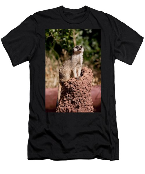 Lookout Post Men's T-Shirt (Slim Fit) by Michelle Wrighton