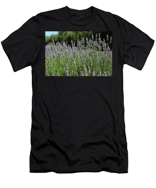 Lovely Lavender Men's T-Shirt (Athletic Fit)