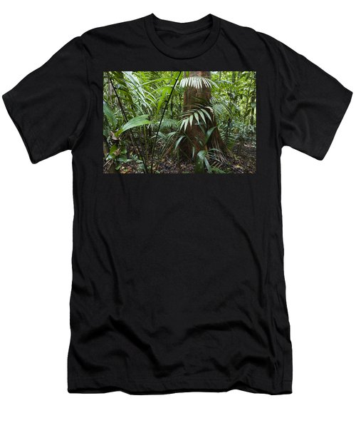 Lowland Rainforest Braulio Carrillo Np Menu0027s T Shirt (Athletic Fit)