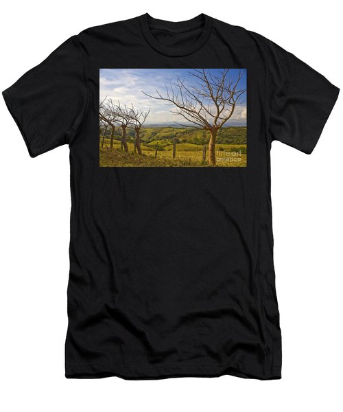 Lush Land Leafless Trees 2 Men's T-Shirt (Athletic Fit)